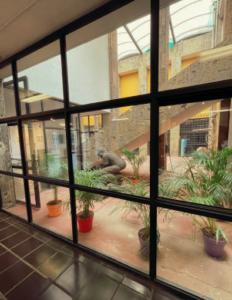 Interior Galería Juan Soriano